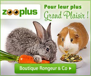 300x250 zooplus fr rongeur