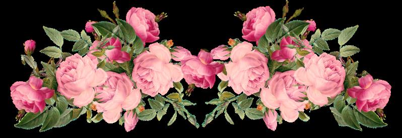 Blush flower clipart