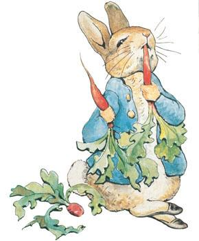 Potter peterrabbit